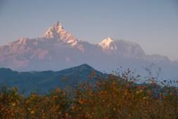 Machapuchare (6993m)