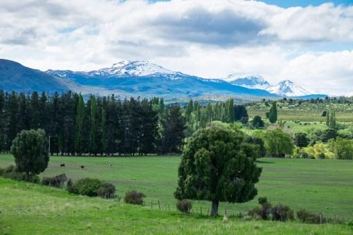 Zielone okolice przed Trevelin, miastem smoków
