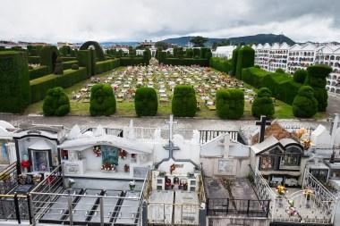 Cmentarz w Tulcán - nam przypomina dobrze zaplanowane osiedle