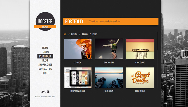 booster Best 30 WordPress Themes of June 2012