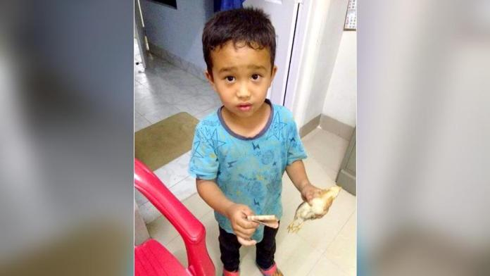 Boy takes tiny chicken to hospital after accidentally running over it on bike