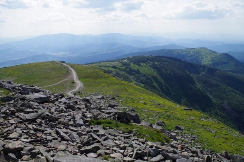 Babia Góra - szkal widok na zieleń