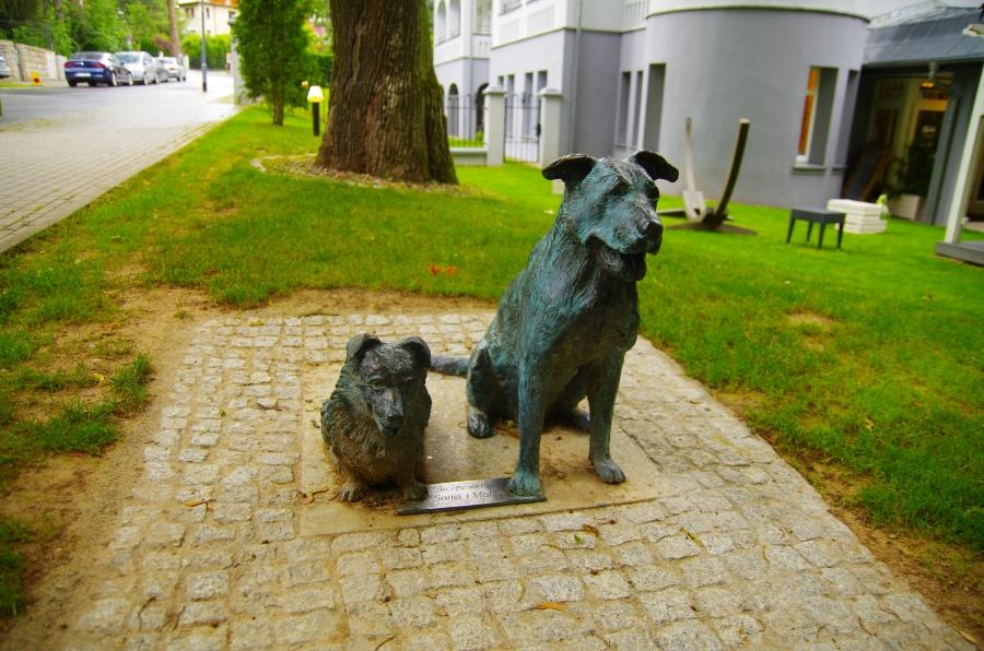 Uzdrowiska - Polanica Zdrój - willowe psie klimaty