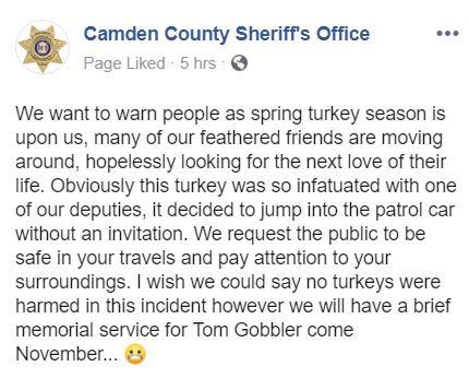 CAmden turkey statement.JPG