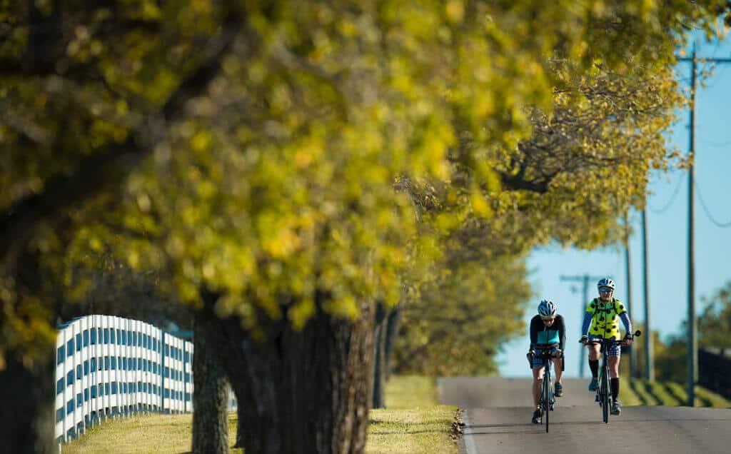pair biking downhill - OUTDOOR ACTIVITIES
