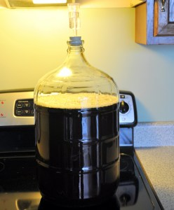 Beer in the Secondary w/ Oak Chips