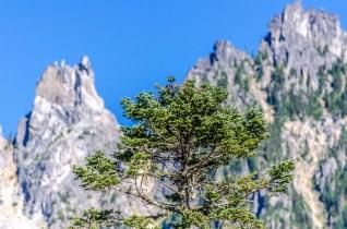 Lindeman Lake mountains