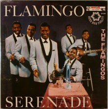 flamingos_flamingoserenadelpfront