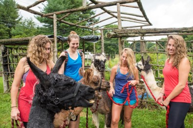 Brittany Batterton, Rebecca Perry, Lidia Ryan, and Laura Perry with llamas from Rowanwood Farm in Newtown, Conn. on Autust 21, 2016.