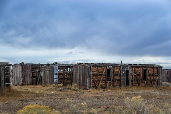 This mysterious grouping of boxcars represents the decay that comes with prolonged isolation. There were row after row of these old boxcars lined up in the middle of the desert. I have no idea what they are for, and I didn't stick around too long to find out either.