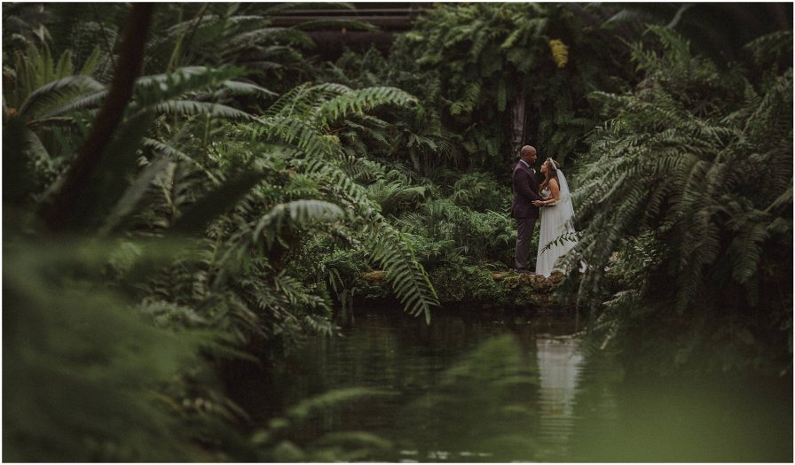 Garfield Park Conservatory Chicago Wedding Engagement Photographer