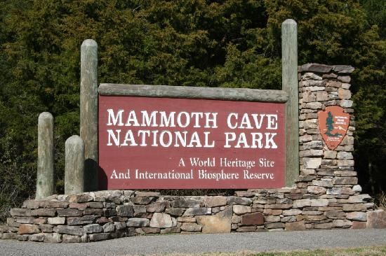 Image result for mammoth cave national park