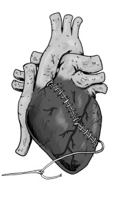 heartbw