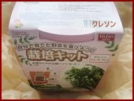 reitou-12-226x300 クレソンの食べ方紹介します。冷凍保存もできます。