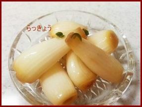 rakkyou0424-1-226x300 らっきょう漬け 下処理の仕方・色々な味付けの漬け方
