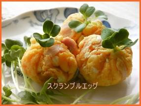 eggu509-8