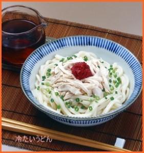 udon617-1-226x300 冷たいうどん レシピ 人気の簡単つくれぽの多いレシピ