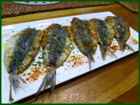 maiwasi712-4