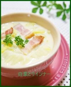 ha2-171x300 白菜とウインナーを使った 簡単人気レシピまとめ