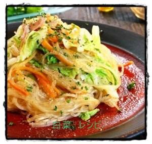 haku1-300x285 白菜サラダレシピ  人気1位は?つくれぽ15000以上で簡単!