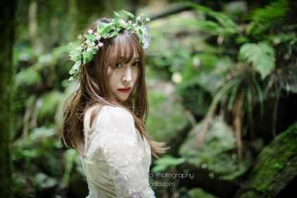 精霊の森04