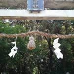 京都ローカルパワースポット 城陽市にある水度神社