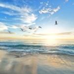 5/12 荒れた水の上を飛ぶ白い鳩の太陽 トライン多しの宇宙エネルギー