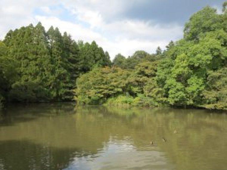 京都府立植物園25