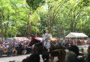 「葵祭」のオススメの楽しみ方、効率のいいまわり方。