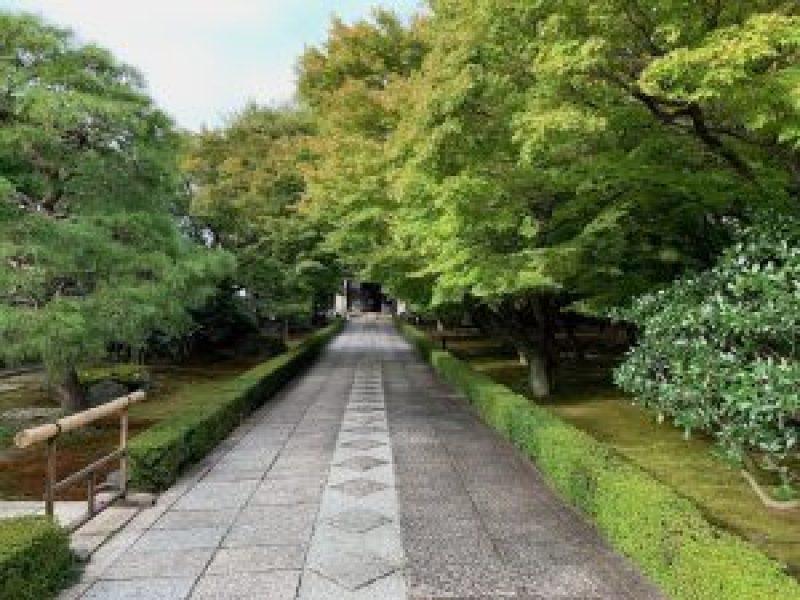 白沙村荘・橋本関雪記念館7
