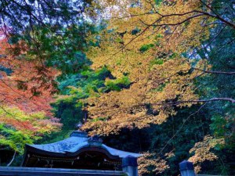 南禅寺kouyou16