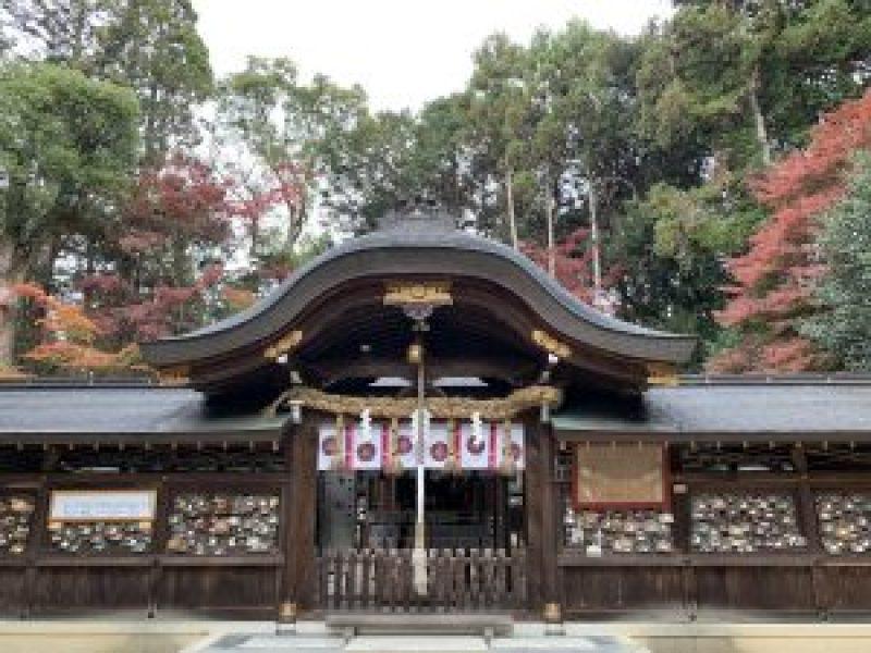 鷺宮神社7