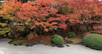 【妙顕寺】京都の紅葉スポットとしていつ有名になってもおかしくない、今のうちの駆け込み寺! 〜後編〜