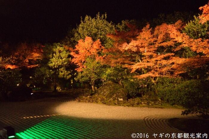 圓徳院のライトアップ