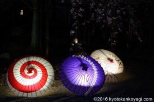 妙蓮寺ライトアップ