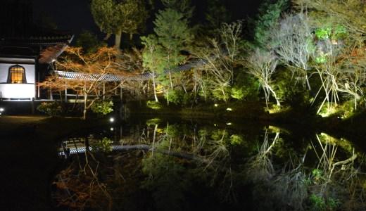 ✨京都・大晦日のおすすめ・秀吉とねねの寺「高台寺」夜間拝観☆ライトアップ☆冬の神秘的な鏡池 Kodaiji KYOTO