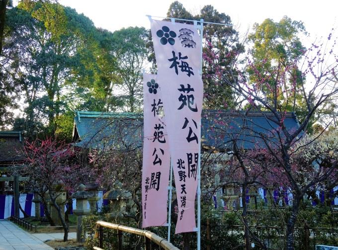 京都・北野天満宮・梅苑