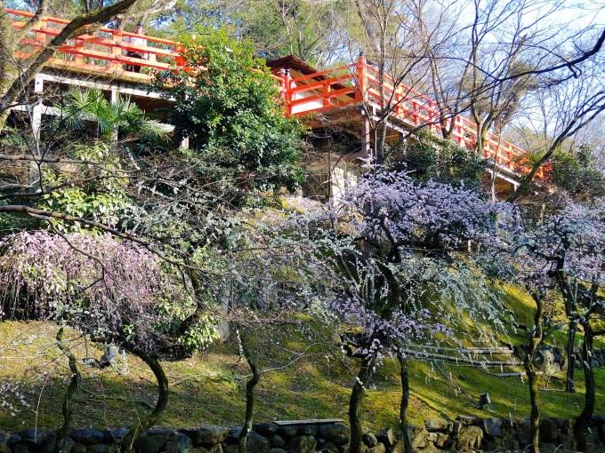 京都「北野天満宮」お土居