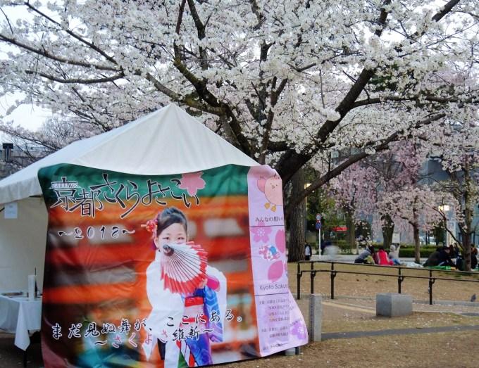 京都さくらよさこい・岡崎公園