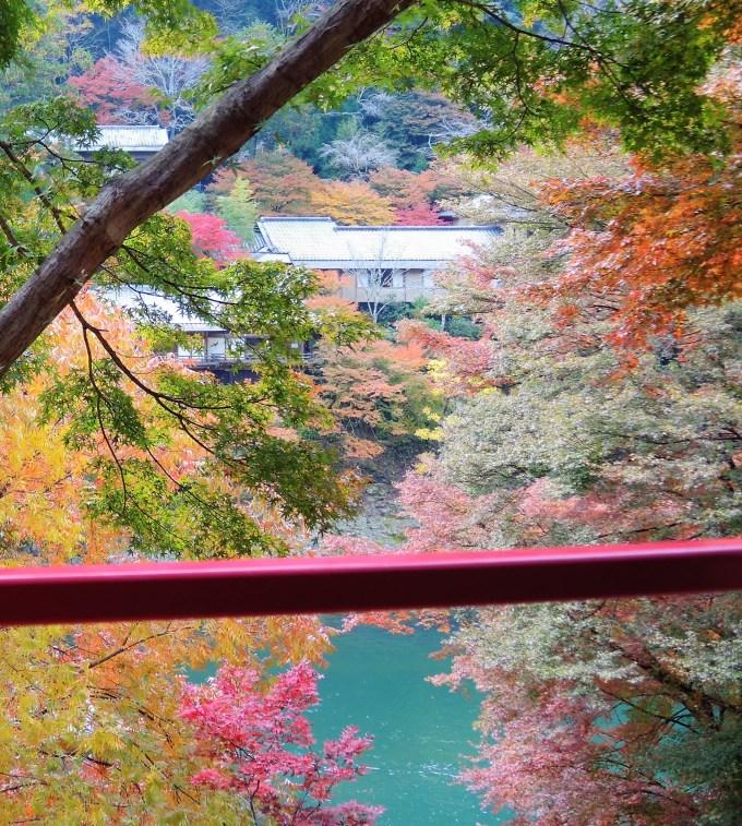 京都・トロッコ列車・車窓・星のや京都