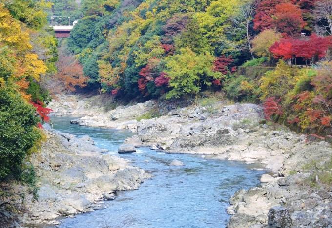 京都・保津峡・トロッコ列車からの車窓