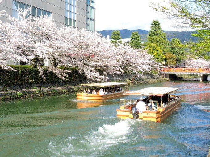 京都「桜廻廊」十石舟めぐり
