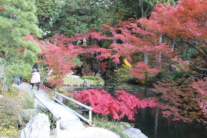40紅葉と鎧の池
