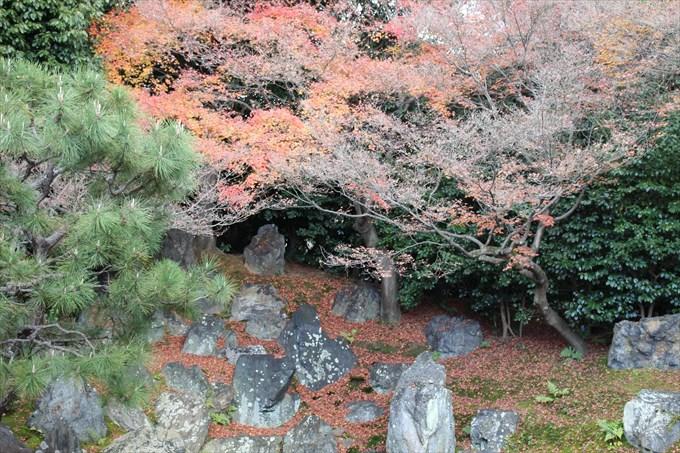 46圓徳院の北庭アップ2