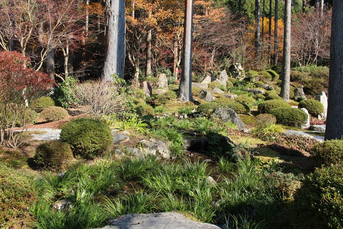 56慈眼の庭