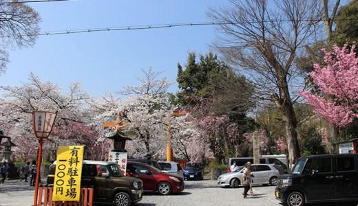 平野神社の駐車場!料金は?近くて安いおすすめ!
