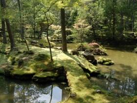 苔寺見どころ