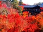 東福寺見どころ