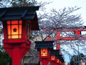 平野神社ライトアップ
