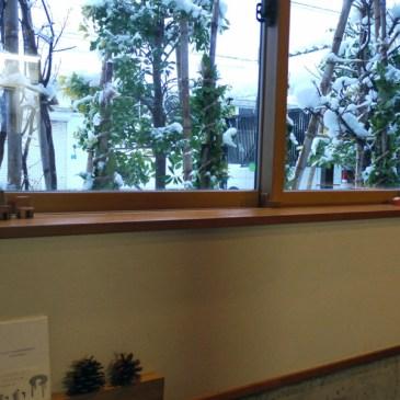雪かきした後窓からまた雪を見る。。。